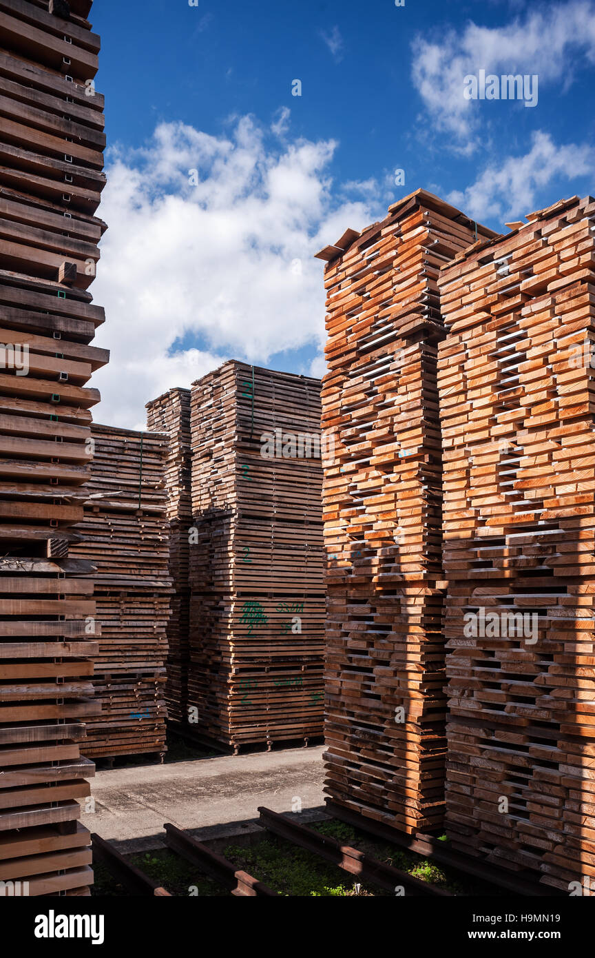 Wood storage in timber processing plant, Templin, Uckermark district of Brandenurg, Germany. - Stock Image