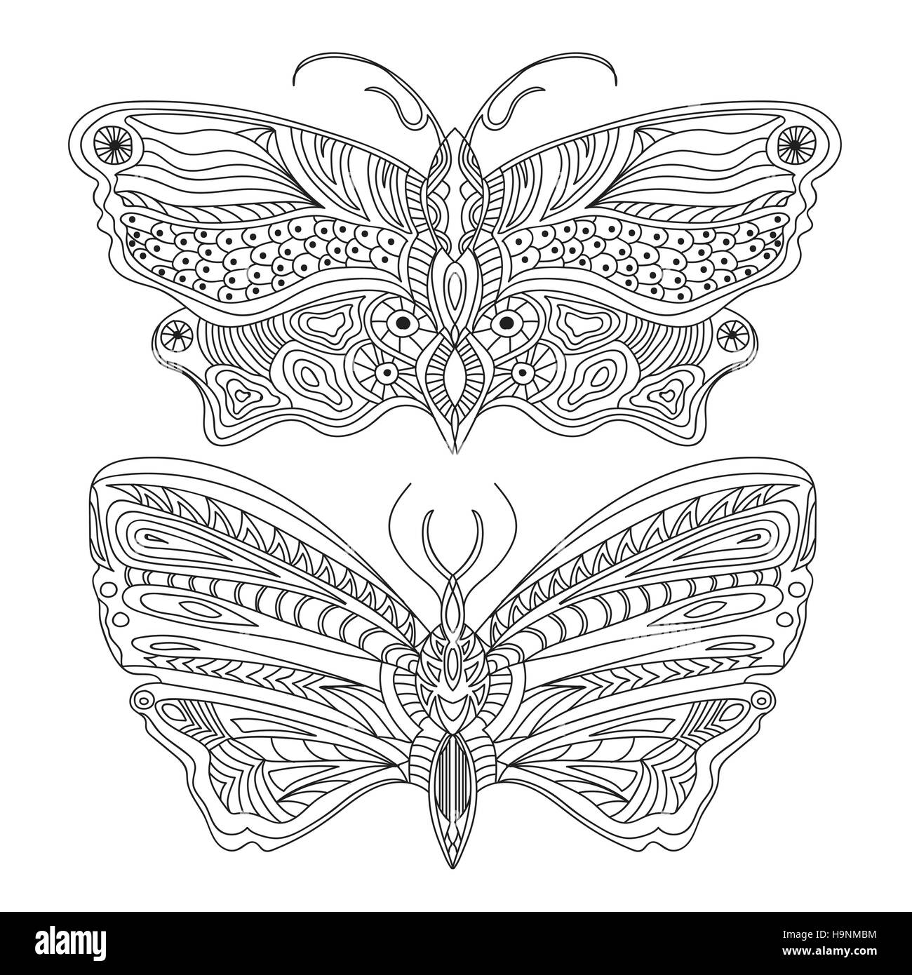 Butterfly Creative concept - Black and white - Vector - Stock Image