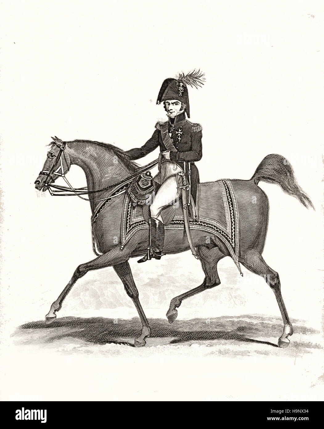 Duke of Wellington - Stock Image