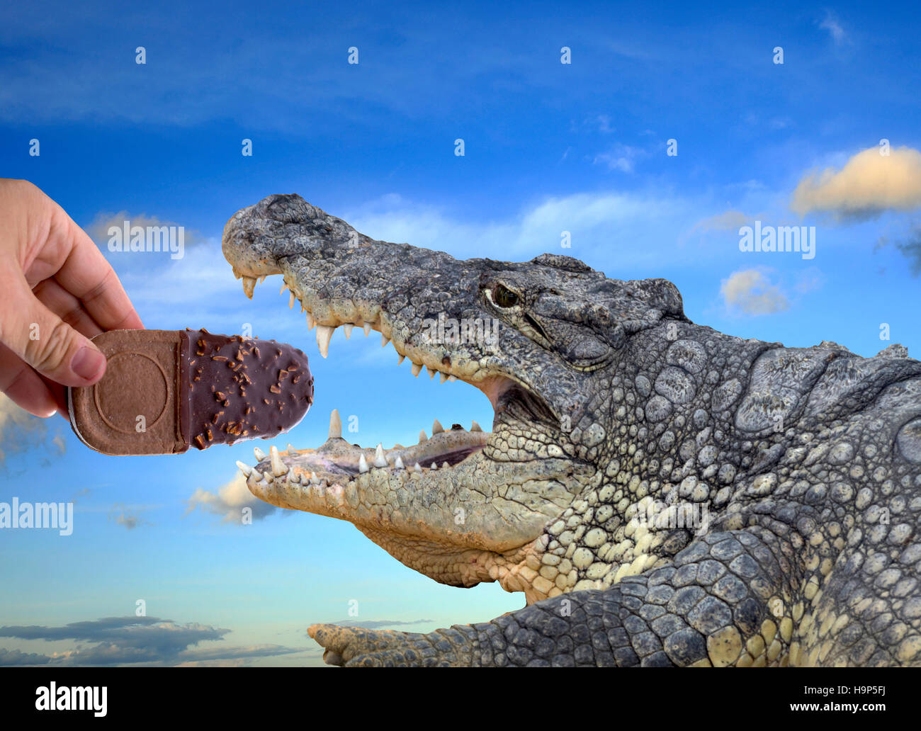 Giving hand with an ice cream eating a crocodile, conceptual would publicize - Stock Image