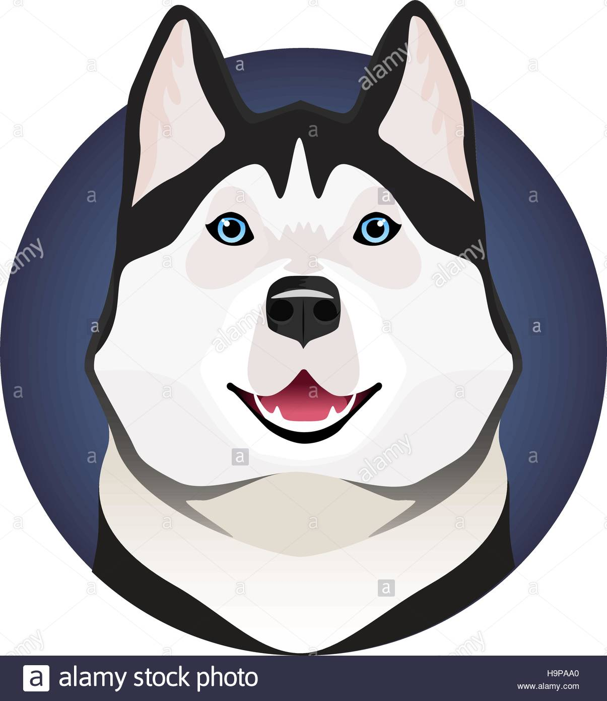 Adorable black and white with blue eyes Husky on circle frame - Stock Vector