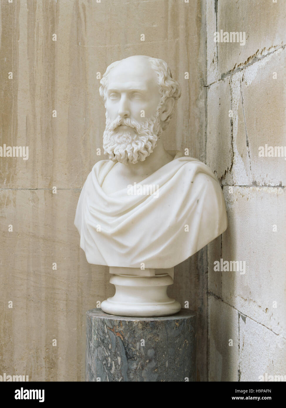 Bust (C19th English) of William Henry Pole-Carew (1811-88) in the Porch at Antony House. - Stock Image