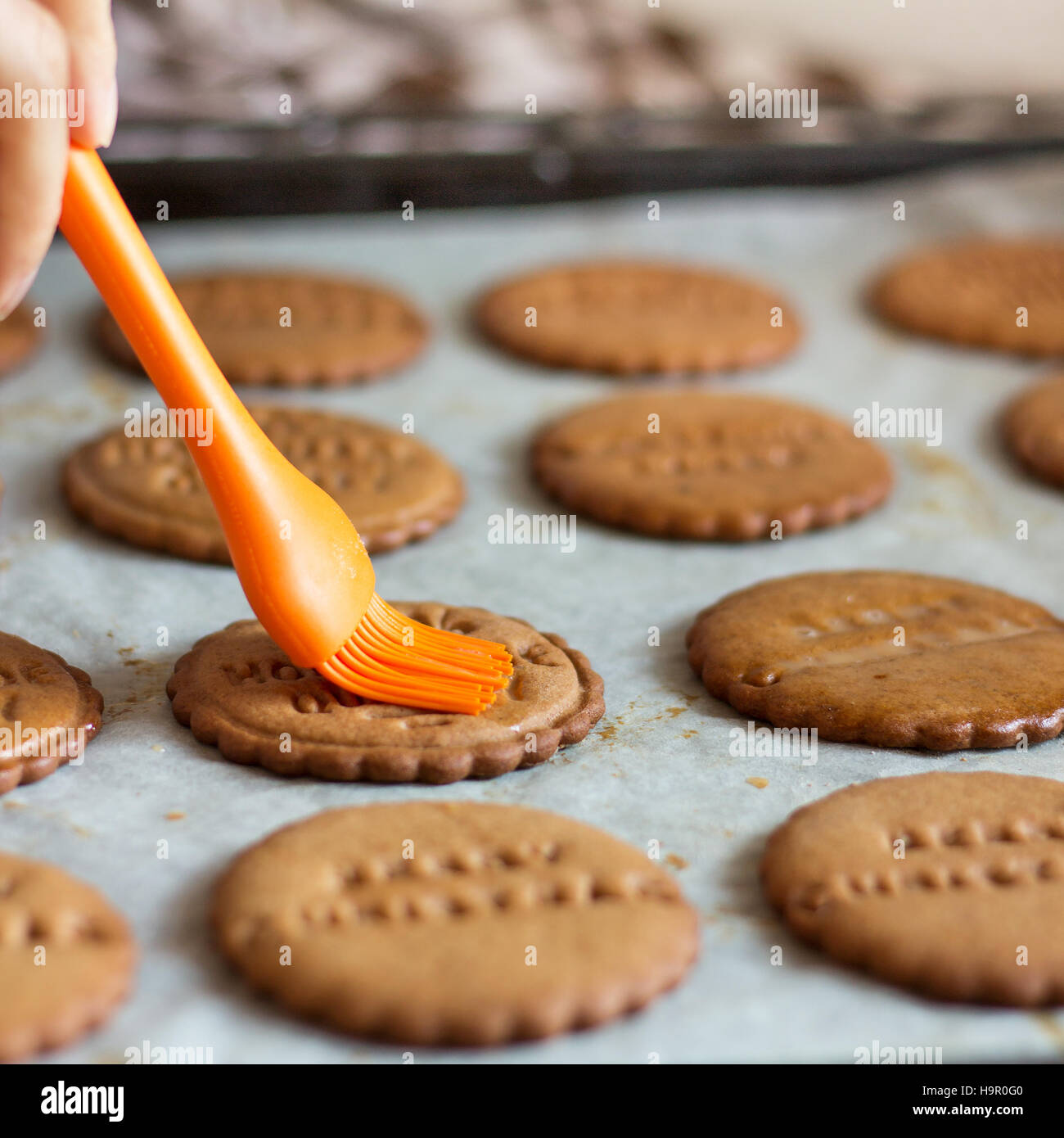 Homemade Gingerbread Cookies - Stock Image