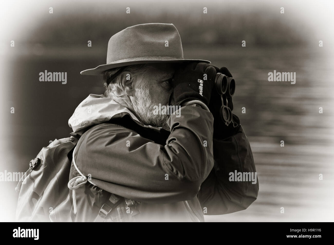 A nature tourist looking through his binoculars at birds wearing a hat - Stock Image