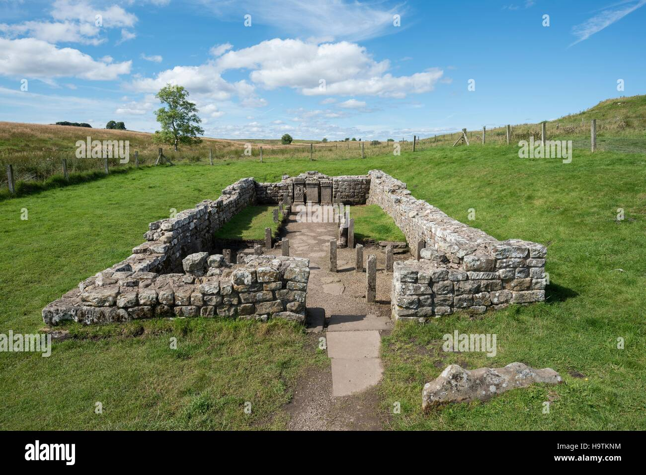 Temple of Mithras from 3rd century, Hadrian's Wall, Carrawburgh, Northumberland, England, United Kingdom - Stock Image