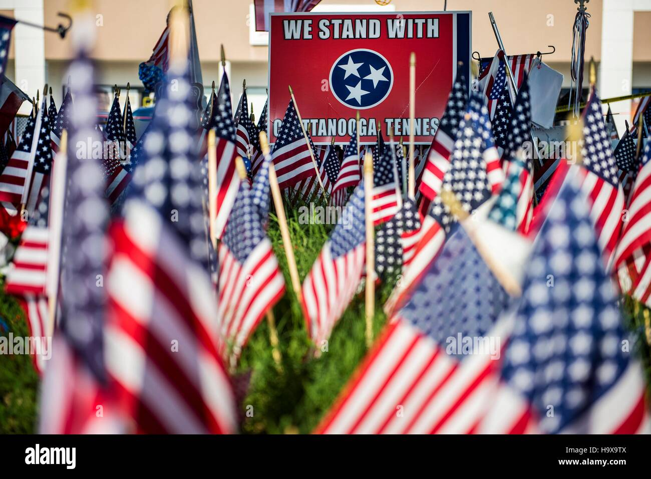 U.S. flags surround the memorial honoring service members killed at the Navy Operational Support Center Chattanooga - Stock Image