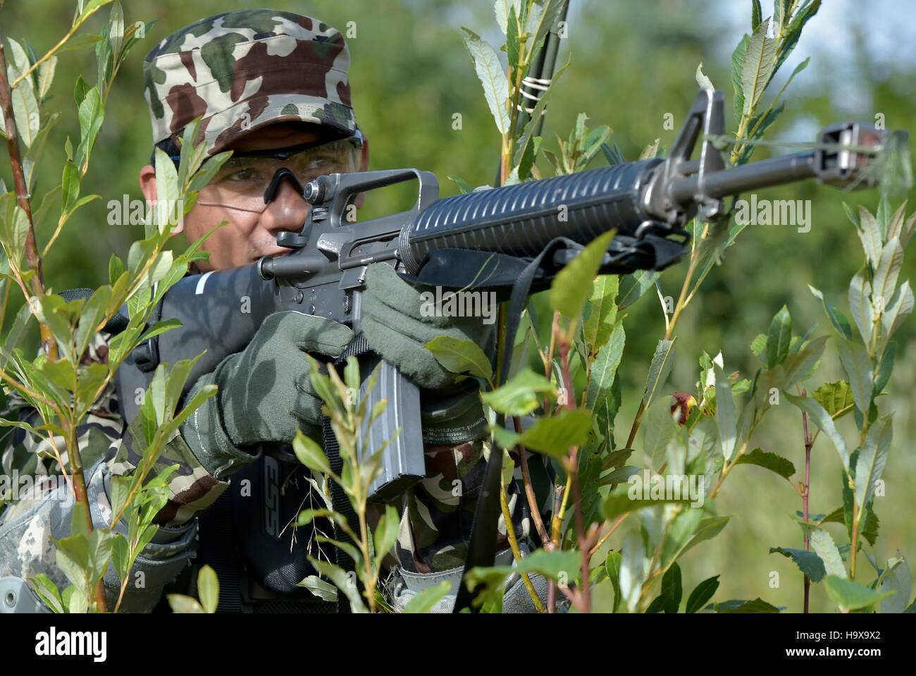 A Nepalese soldier participates in the Situational Training Exercise portion of the U.S. Army Alaska Warrior Leader - Stock Image