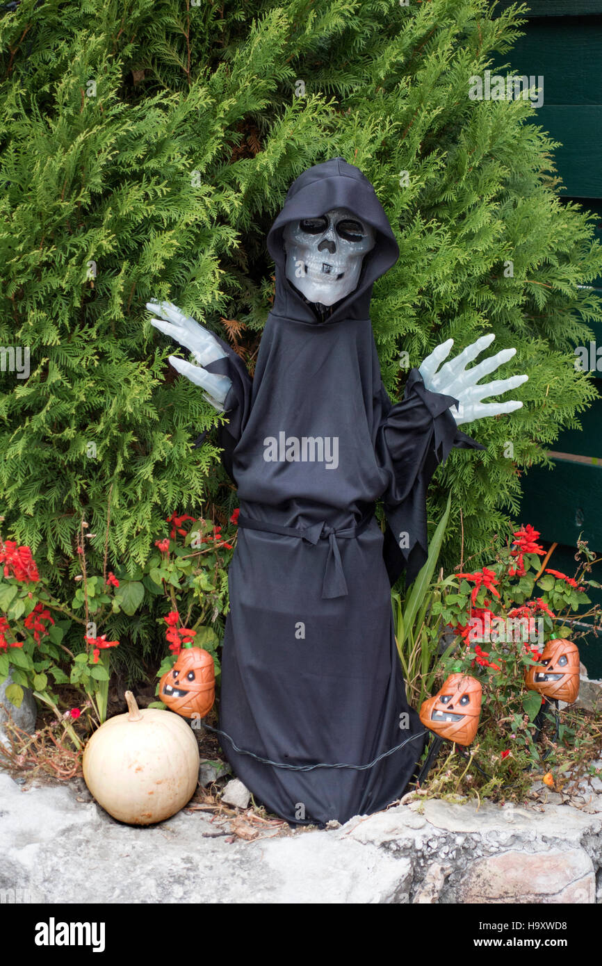 Scary Halloween skeleton dressed as the Grim Reaper surrounded by evil jack-o'-lanterns. Battle Lake Minnesota - Stock Image