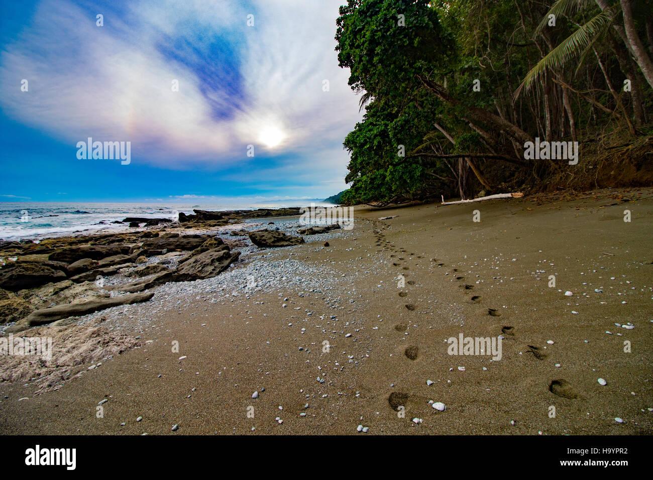 Costa Rican Beach, Osa Peninsula - Stock Image