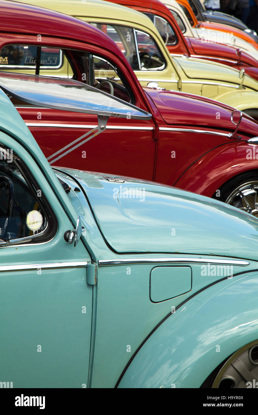 Line of VW Beetles at Harewood house VW Fest 2016 - Stock Image