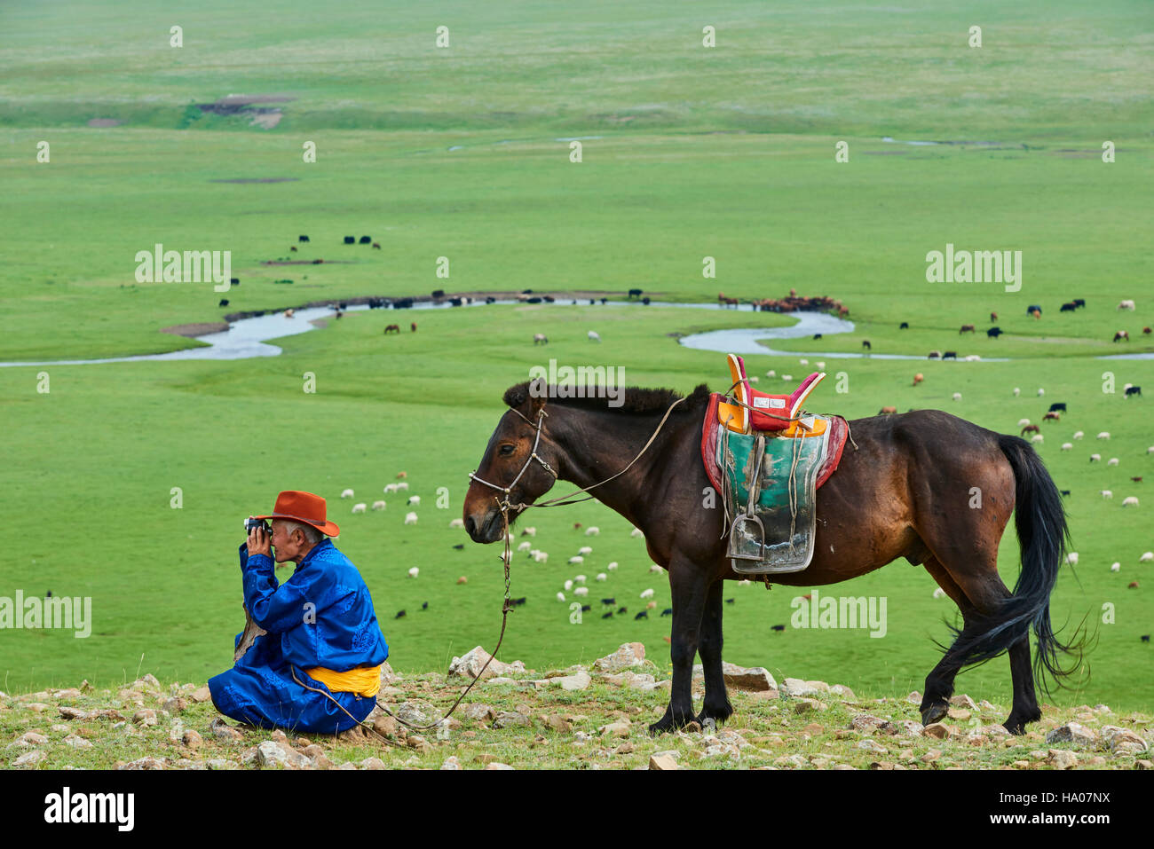 Mongolia, Arkhangai province, yurt nomad camp in the steppe, Mongolian horserider - Stock Image