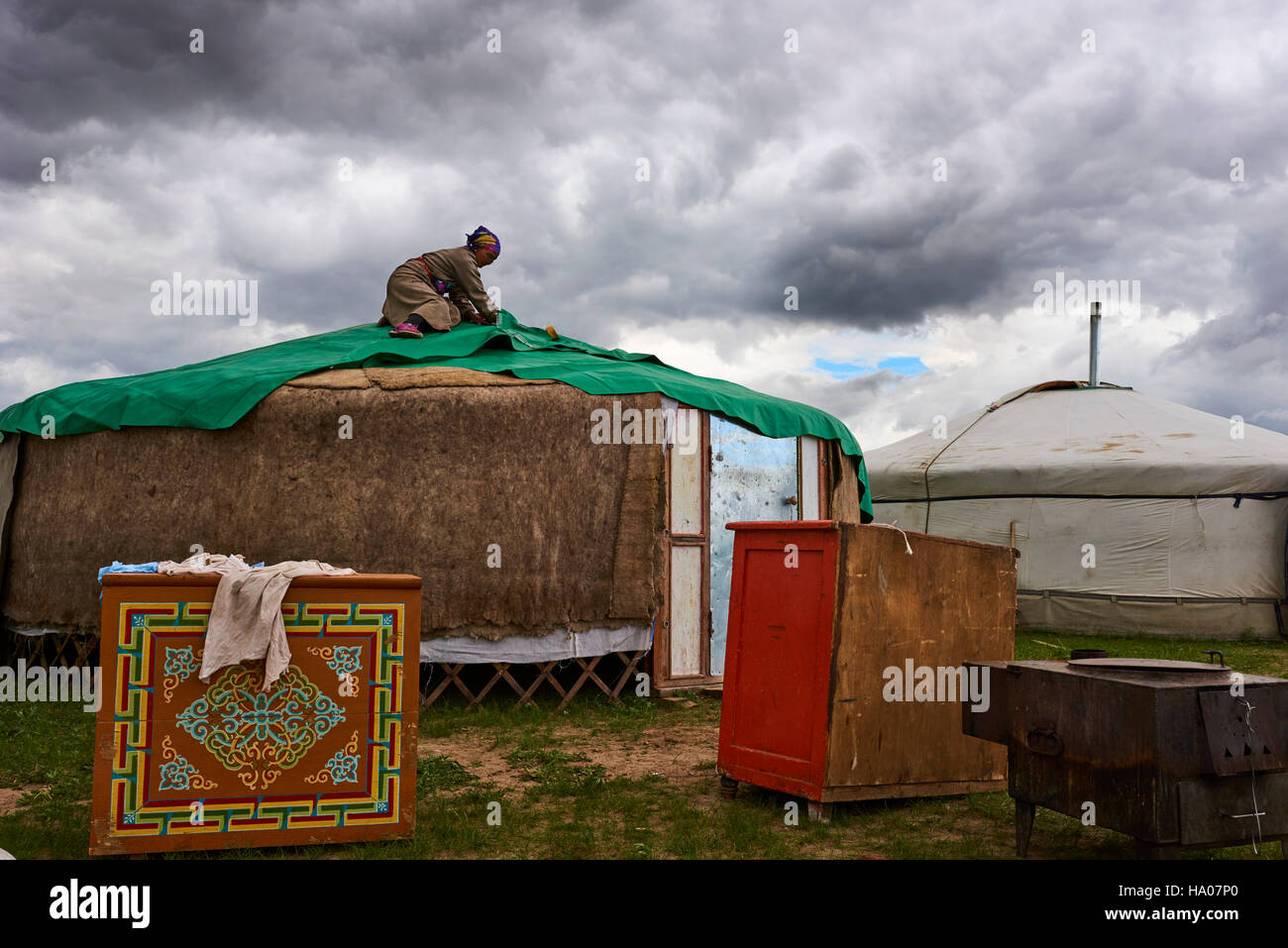 Mongolia, Ovorkhangai province, Orkhon valley, Nomad camp migration, construction of yurt Stock Photo