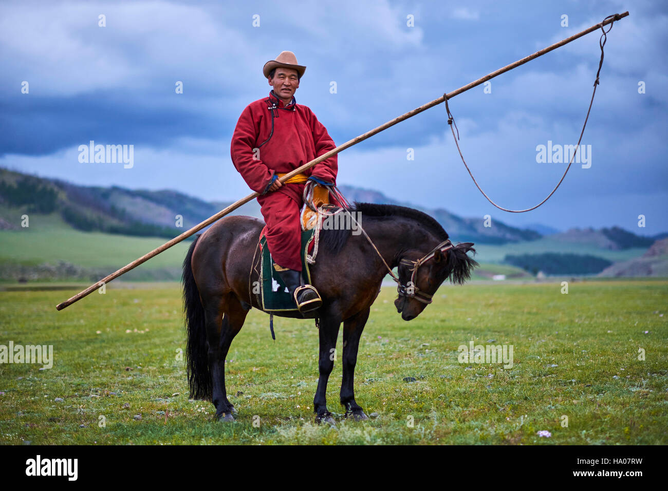 Mongolia, Ovorkhangai province, Orkhon valley, Nomad camp, Mongolian horserider with his urga to catch the horses - Stock Image