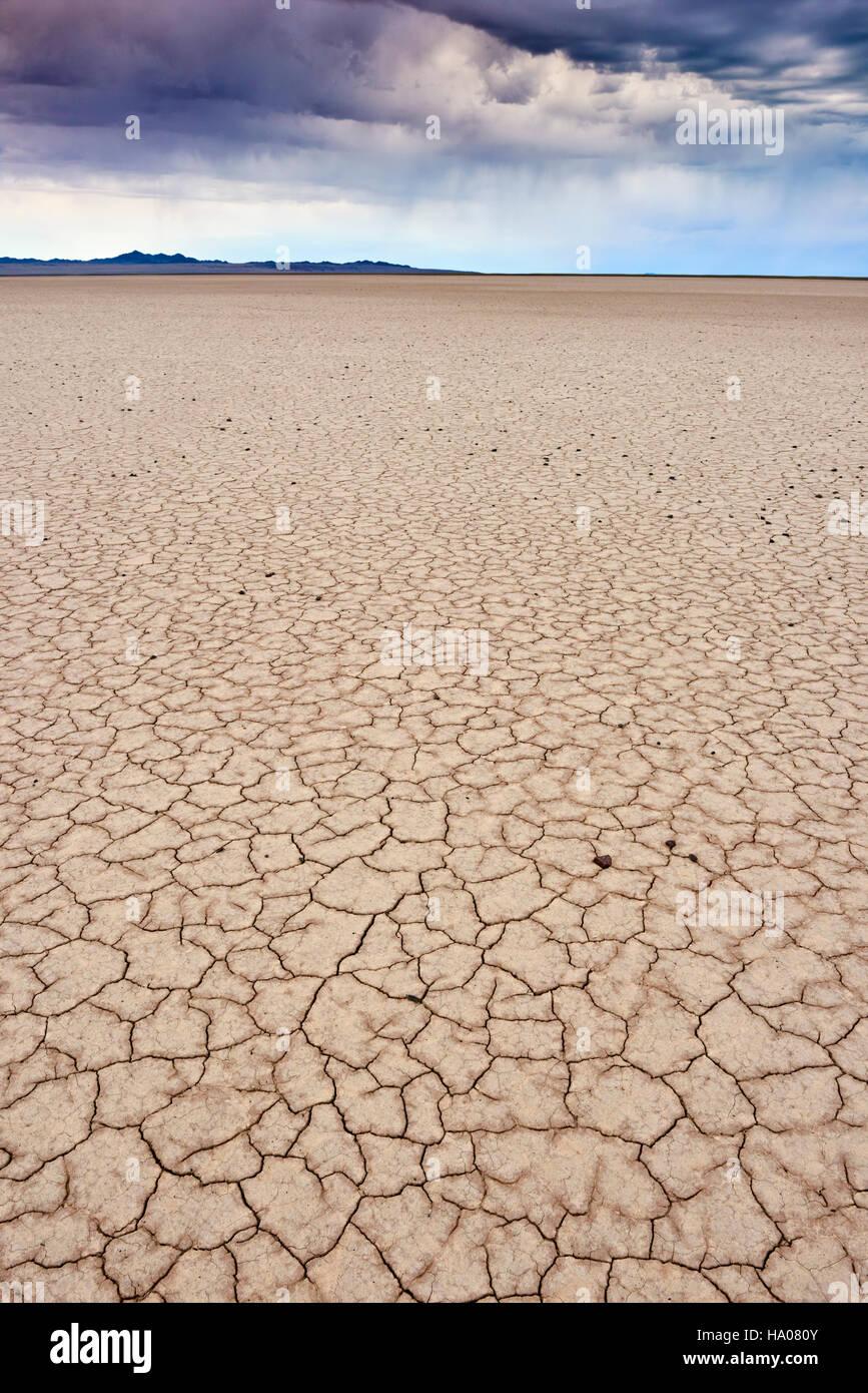 Mongolia, Zavkhan province, the ground in the deserted region - Stock Image