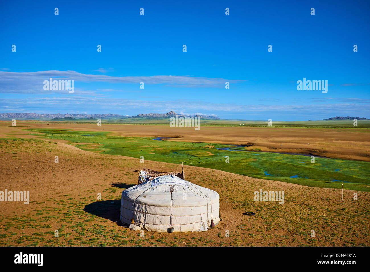 Mongolia, Zavkhan province, nomad camp in the steppe - Stock Image