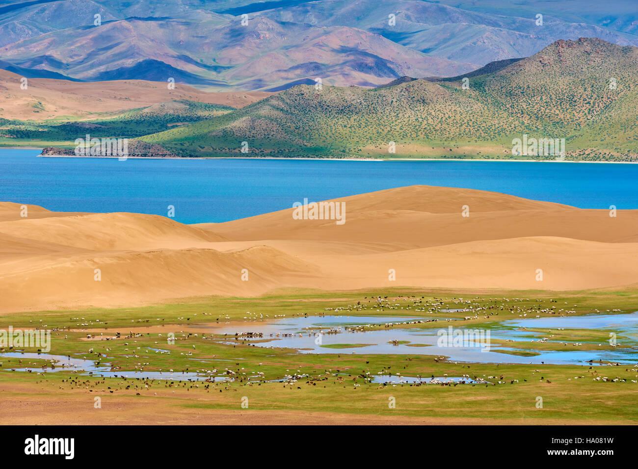 Mongolia, Zavkhan province, Khar Nuur lake, sand dune around Khar Nuur Lake - Stock Image