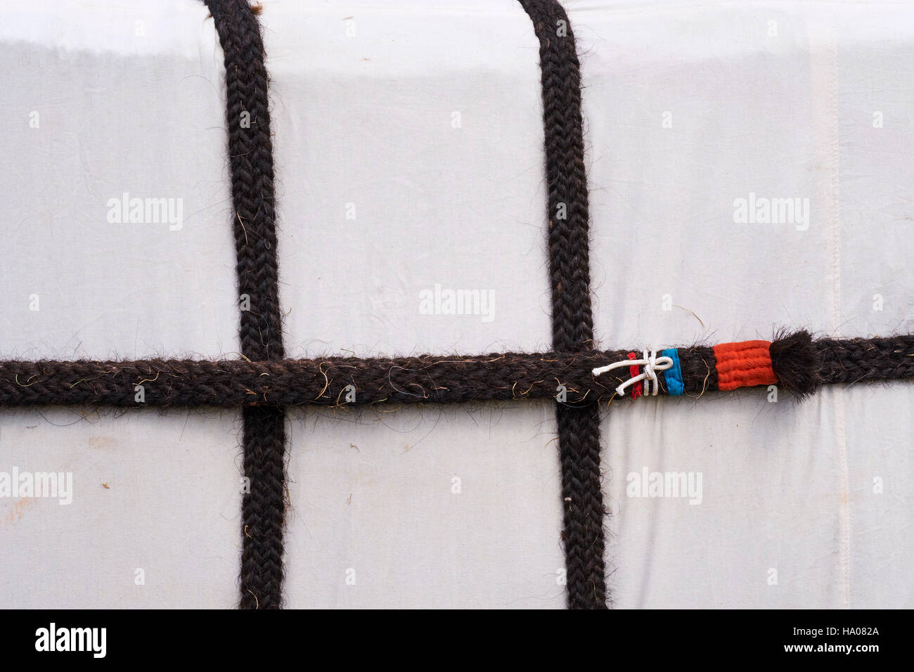 Mongolia, Uvs province, western Mongolia, detail of a Mongolian yurt, the rope made with yak's hair - Stock Image
