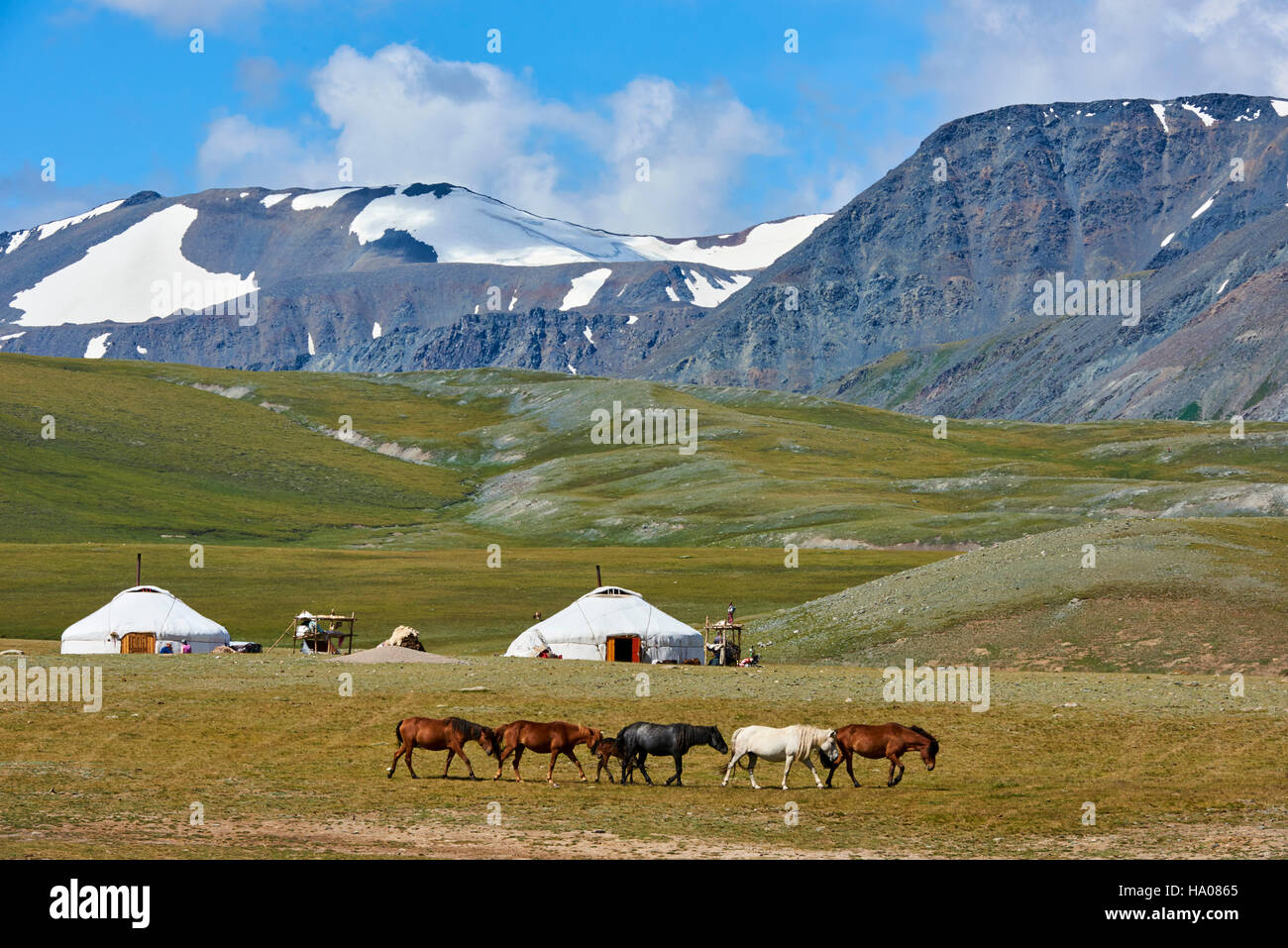 Mongolia, Bayan-Ulgii province, western Mongolia, National parc of Tavan Bogd, the 5 highest summit of the Altay - Stock Image