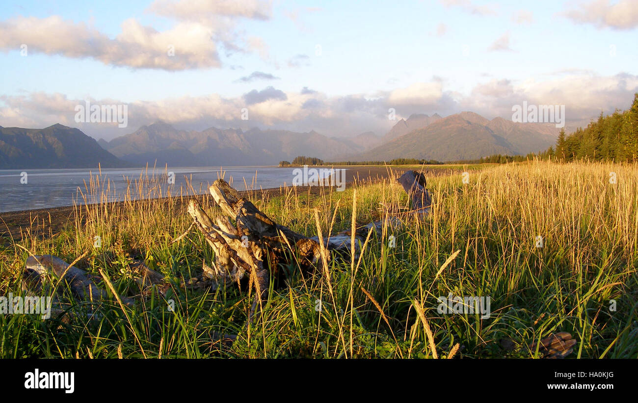 lakeclarknps 25286508245 Autumn in Chinitna Bay - Stock Image