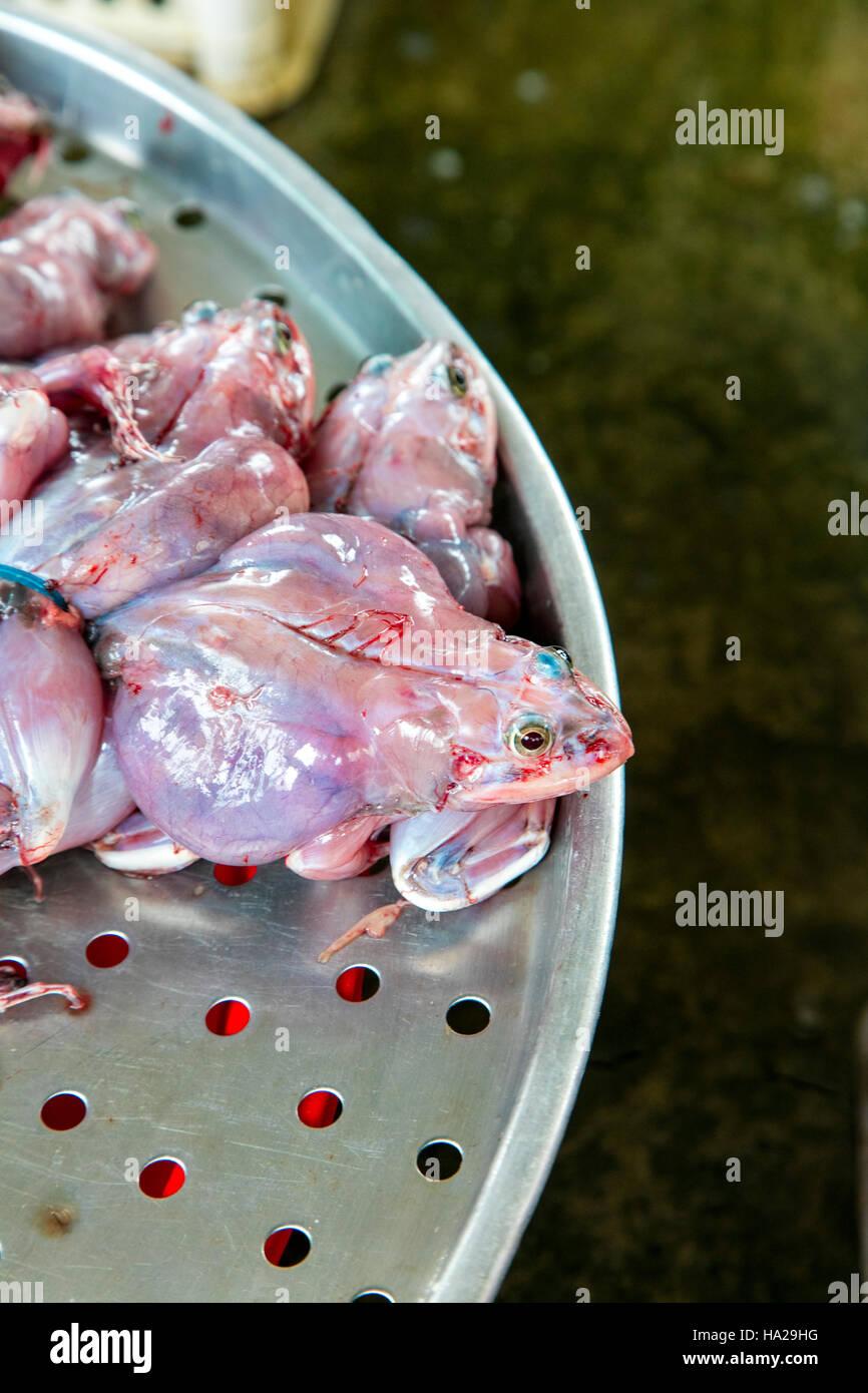 Frog, Market, Sa Dec, Mekong River, Vietnam, Asia - Stock Image