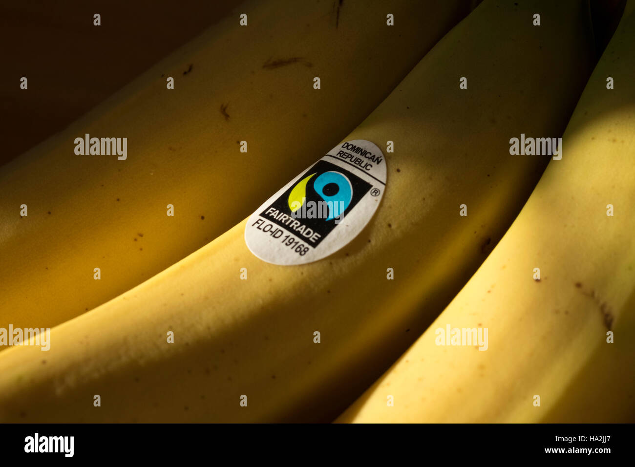 Bunch of Bananas with Fair Trade sticker - Stock Image