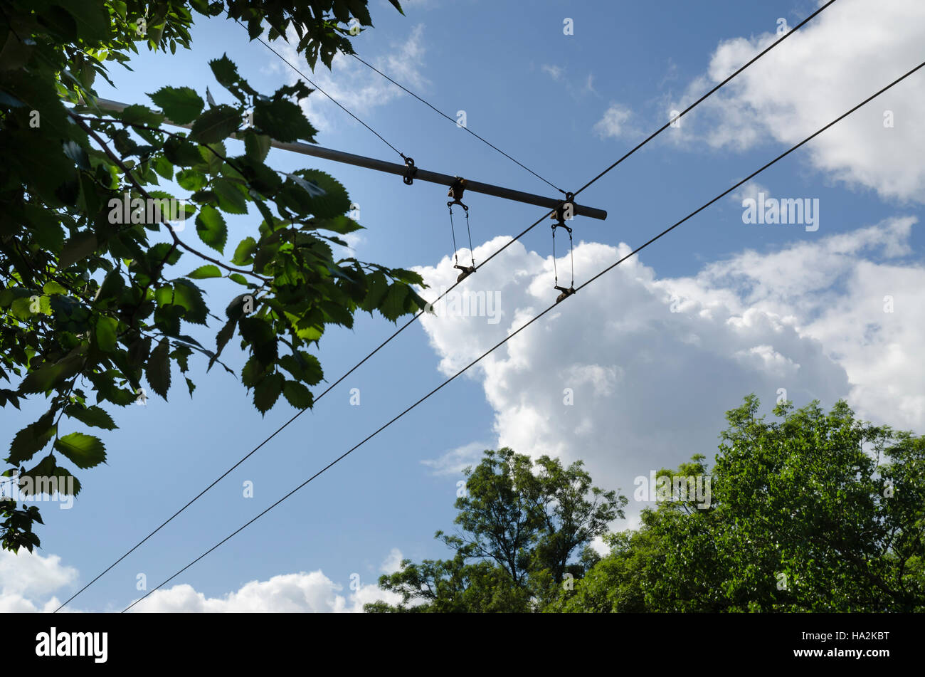 Trolley Bus Electric Stock Photos & Trolley Bus Electric Stock ...