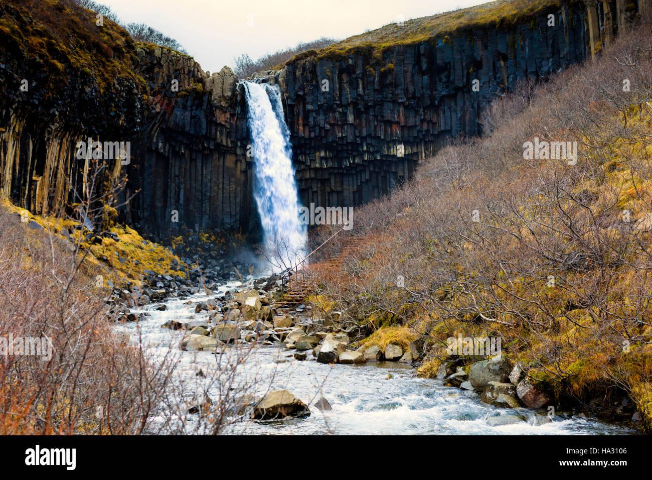 Svartifoss (Black Falls) waterfall in Skaftafell in Vatnajokull National Park in Iceland, - Stock Image