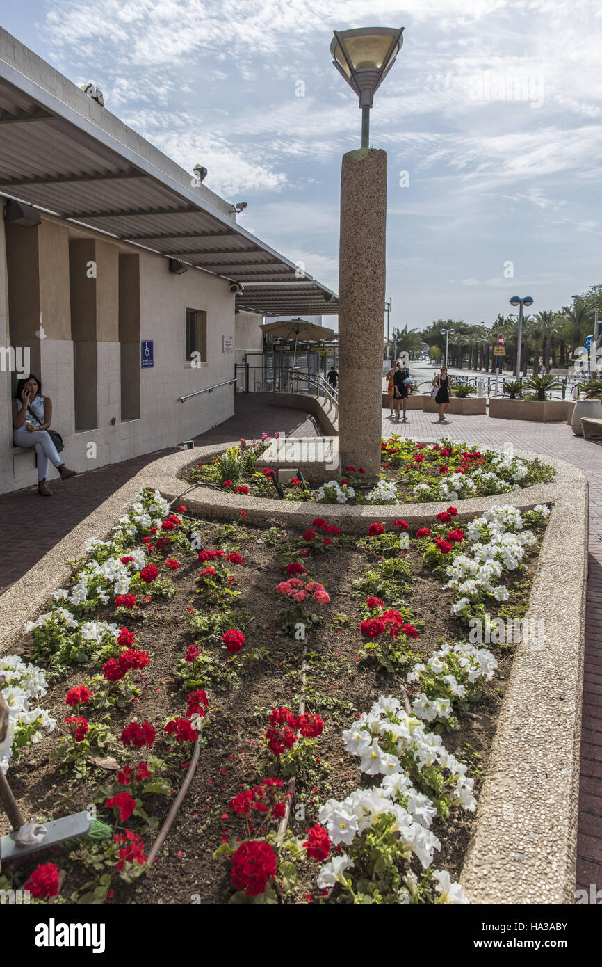 flowerbed in front aerodrome hall - Stock Image