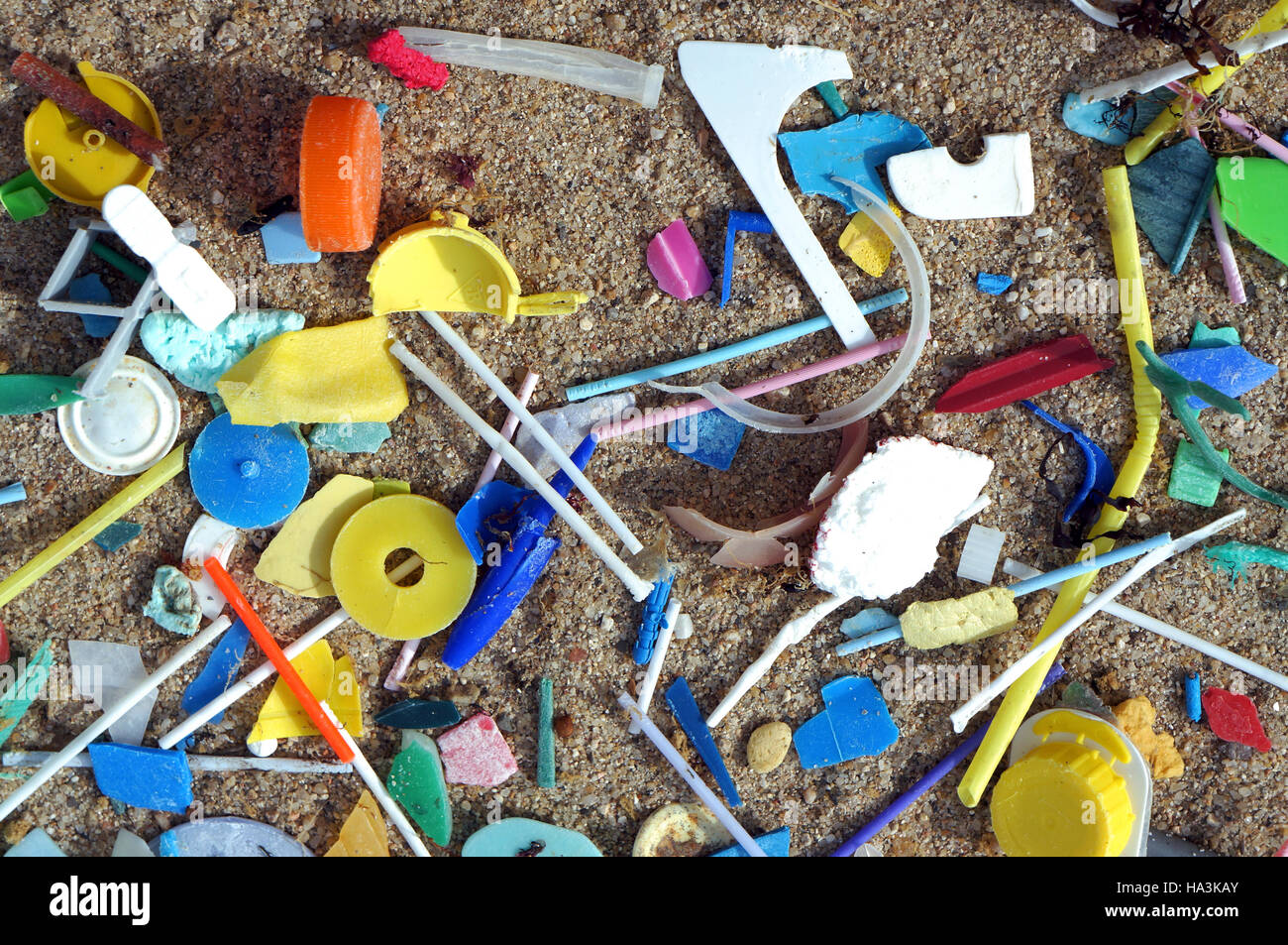 Plastic debris washed ashore on the beach. Notice the large amount of small plastic tubes from cotton swabs. Plastic - Stock Image