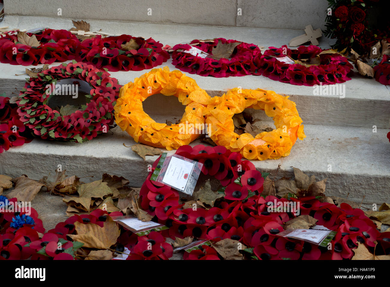 Remembrance Day at the Cenotaph. Two orange poppy wreaths amongst red ones. - Stock Image