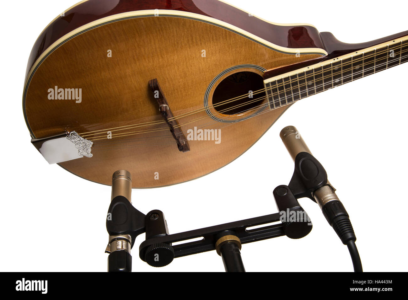 Recording a mandolin using a matched pair of condenser instrument microphones, one set to the neck, the other toward - Stock Image