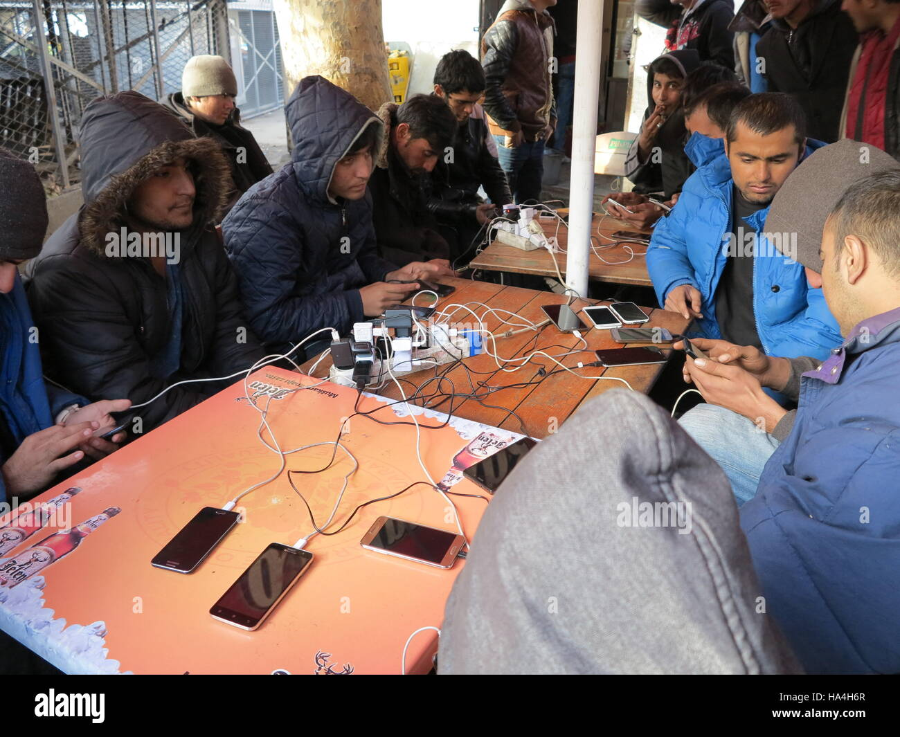 Belgrade, Serbia. 26th Nov, 2016. Refugees charging their moblie phones in a park in the centre of Belgrade, Serbia, Stock Photo