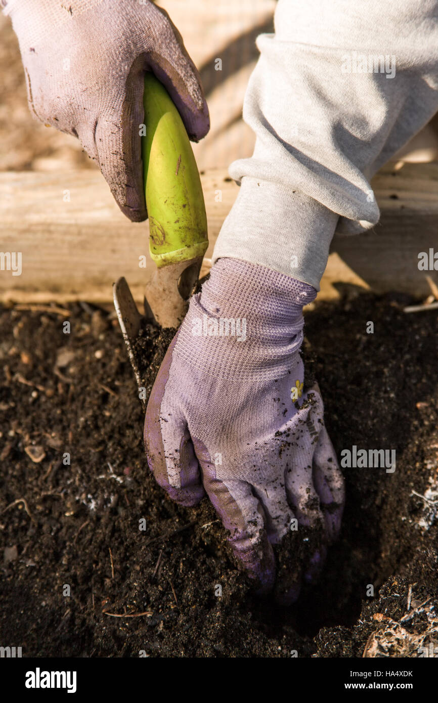 For each soil test sample area, take 15 sub-samples across the whole area, being sure to get even coverage. - Stock Image