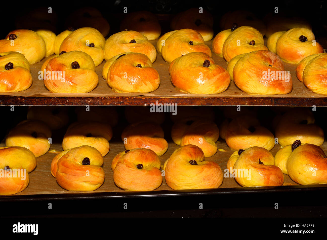 Home made Lucia bakery with raisin in oven. - Stock Image