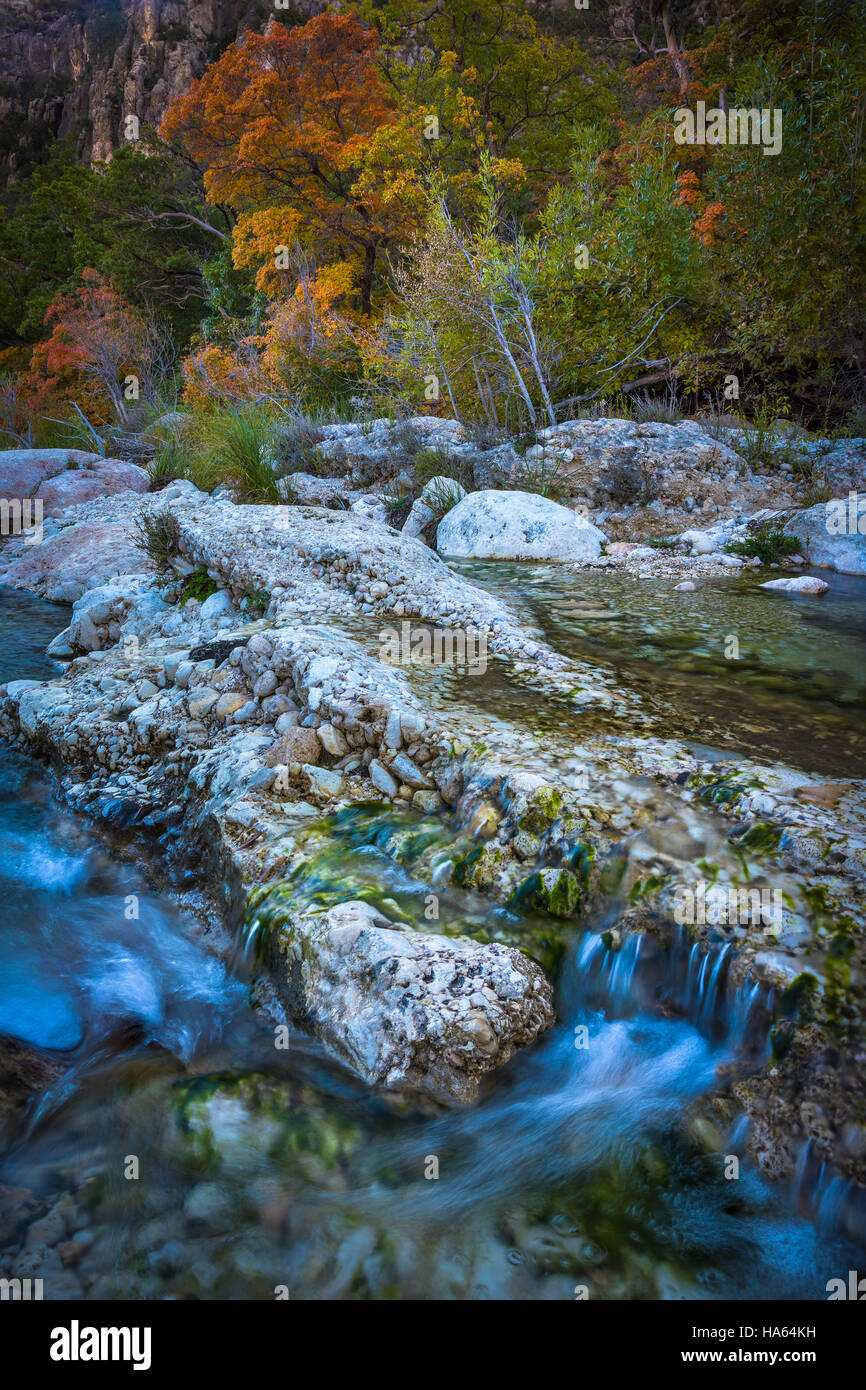 McKittrick Canyon is a scenic canyon within the Guadalupe Mountains of West Texas and Eddy County, New Mexico. The - Stock Image