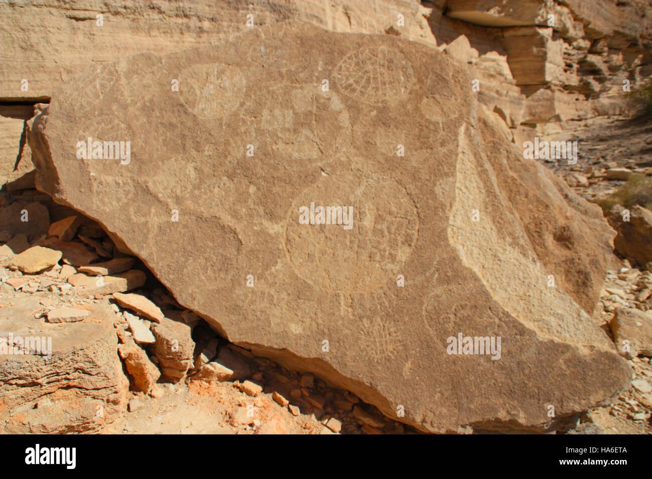 blmnevada 19791044950 Conservation area sheild man - Stock Image