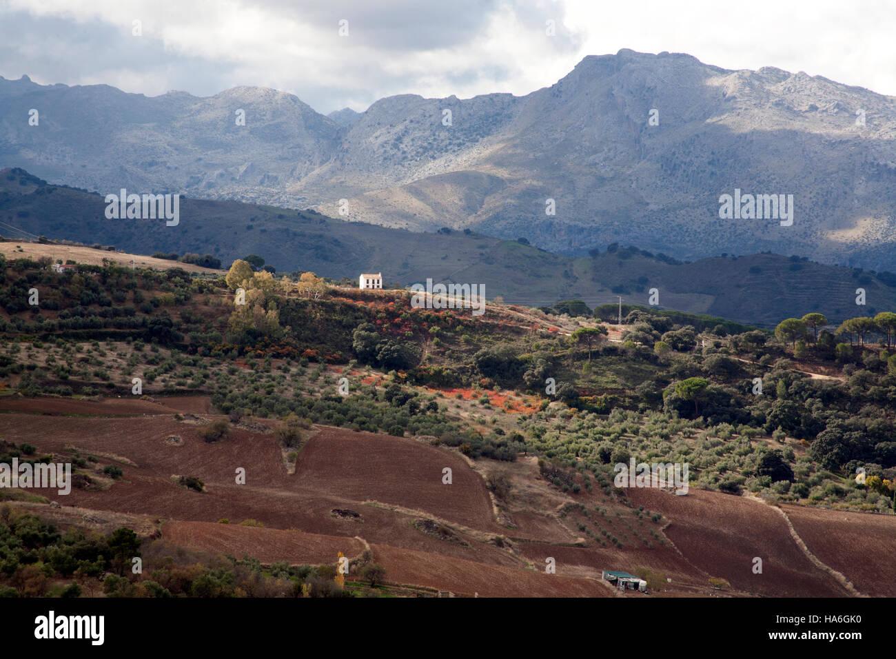 Serranía de Ronda mountains, Ronda Andalucia Spain - Stock Image