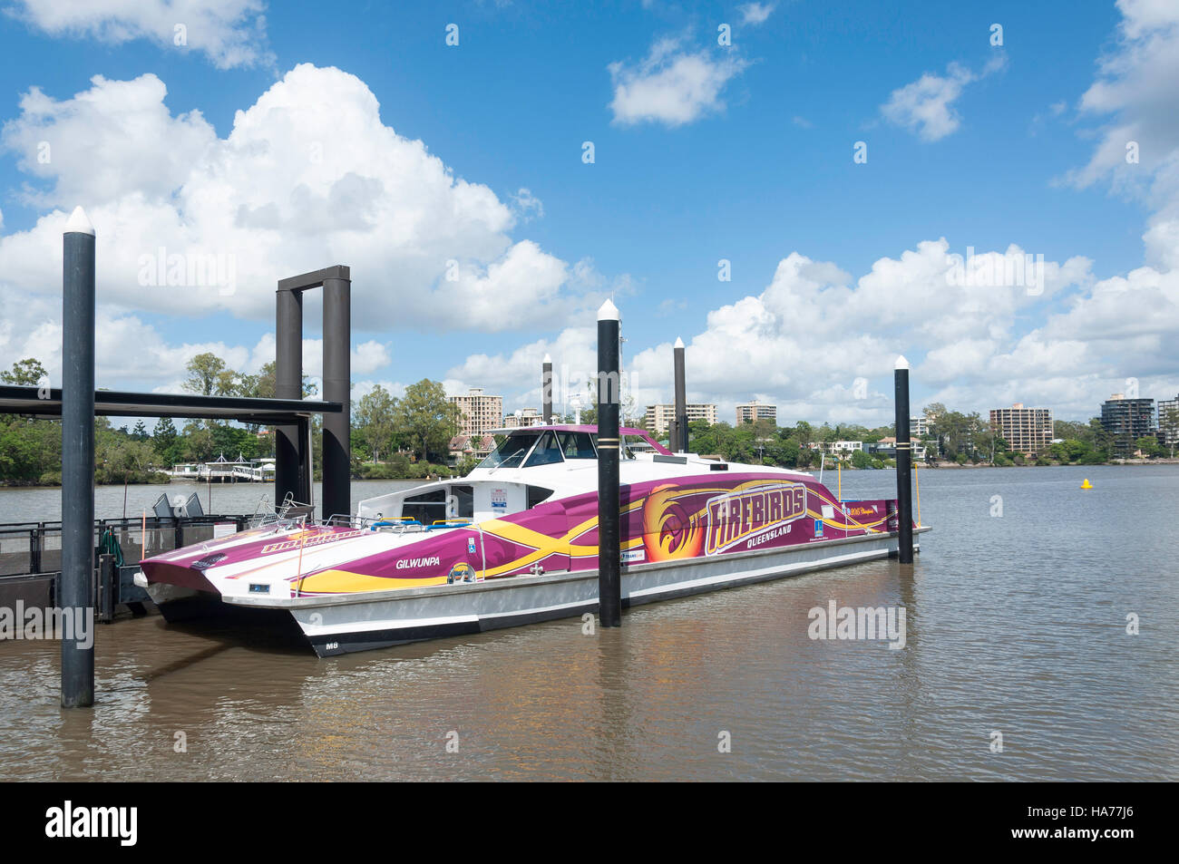 Translink catamaran at West End Ferry Terminal, West End, Brisbane, Queensland, Australia - Stock Image