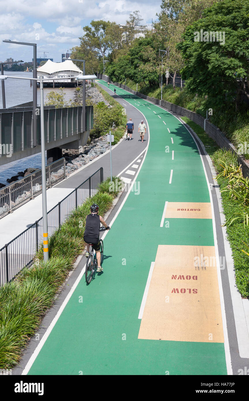 Bicentennial Bikeway on banks of Brisbane River, Milton, Brisbane, Queensland, Australia - Stock Image