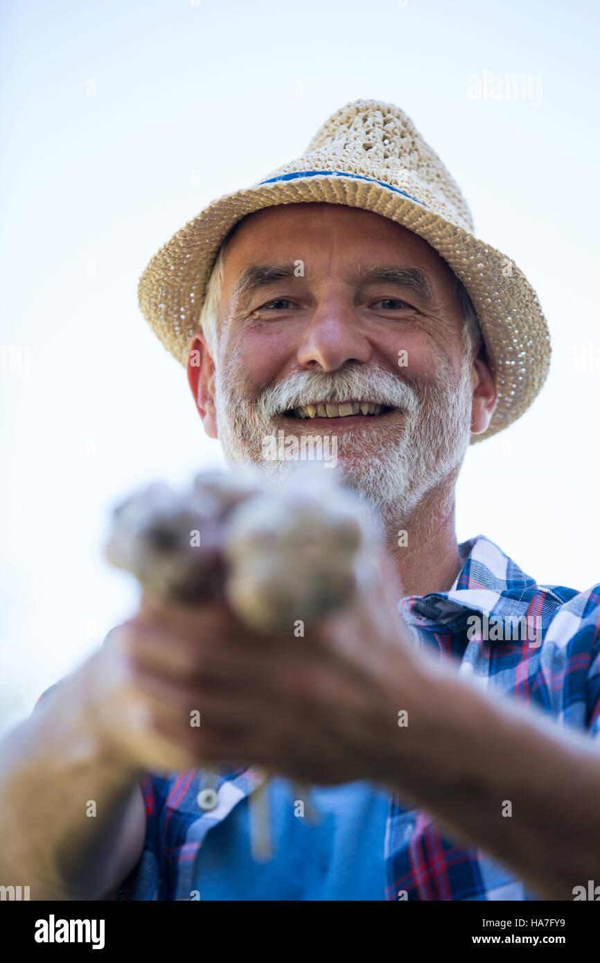 Senior man holding freshly picked garlic bulb Stock Photo