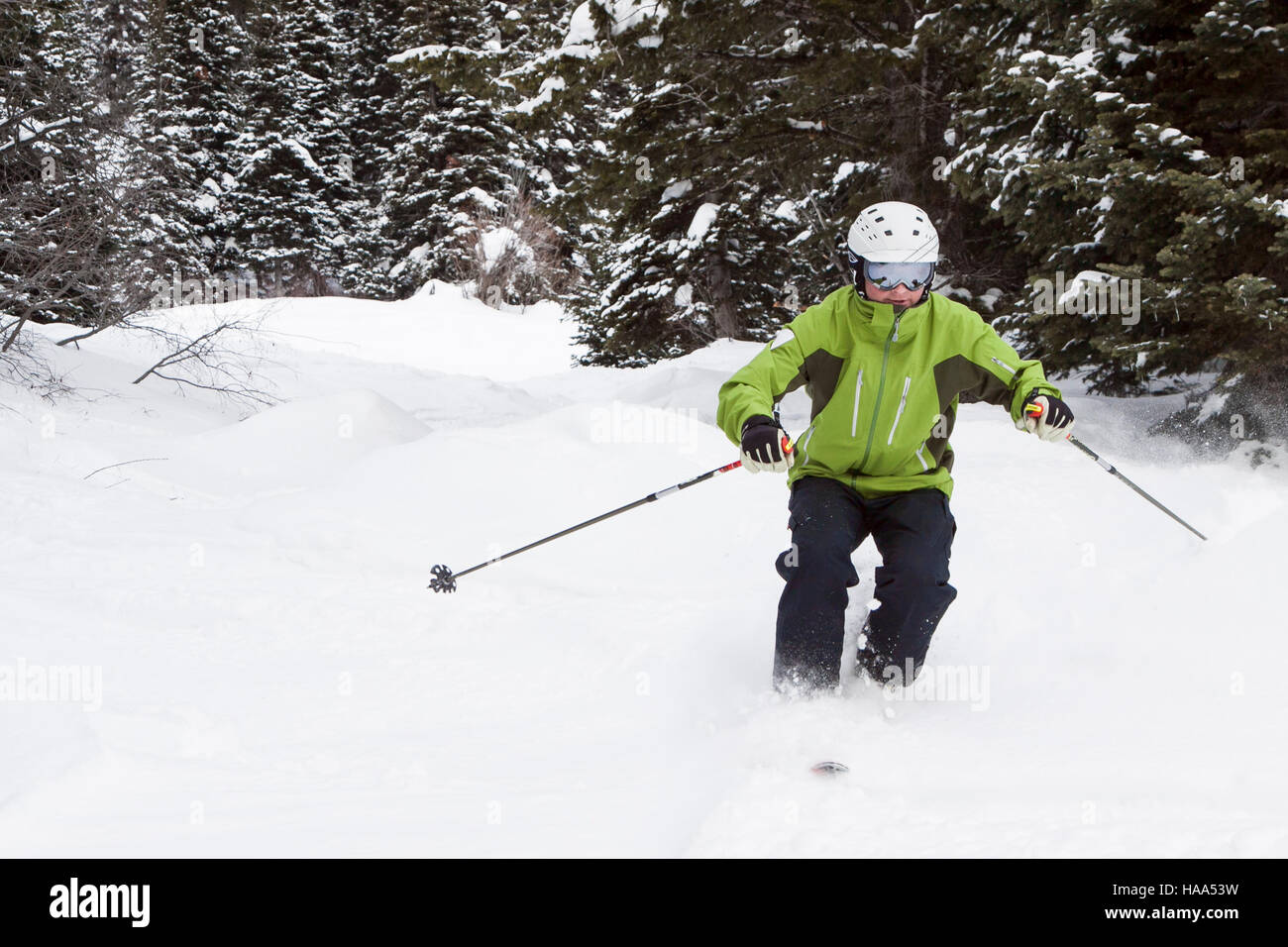 Skier skiing in deep powder in the woods - Stock Image
