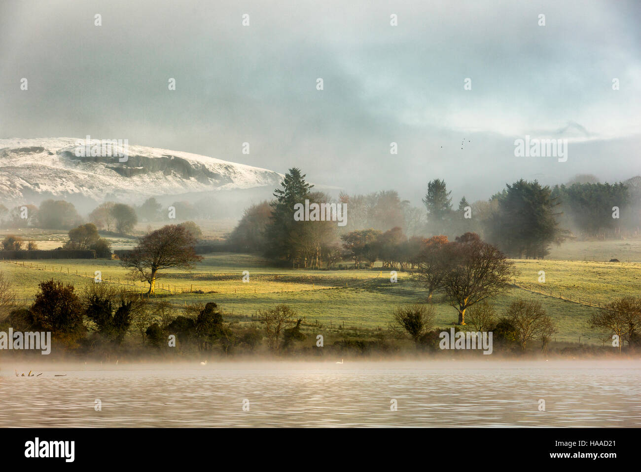 winterscape pastures in the west of ireland - Stock Image