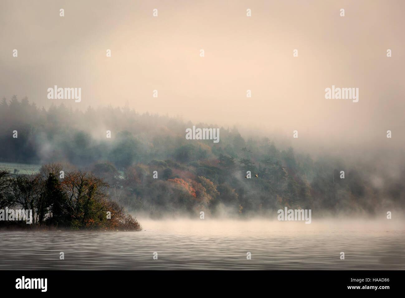 morning mist rising over lough gill ireland - Stock Image