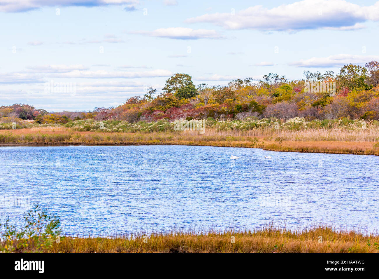 Body of water amongst natural undeveloped land - Stock Image