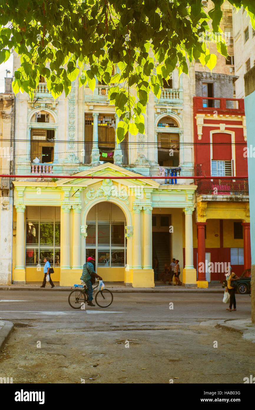 Havana Cuba, colorful street scene shop frontage man on bicycle pedestrians sunlight and tree branches top of frame - Stock Image