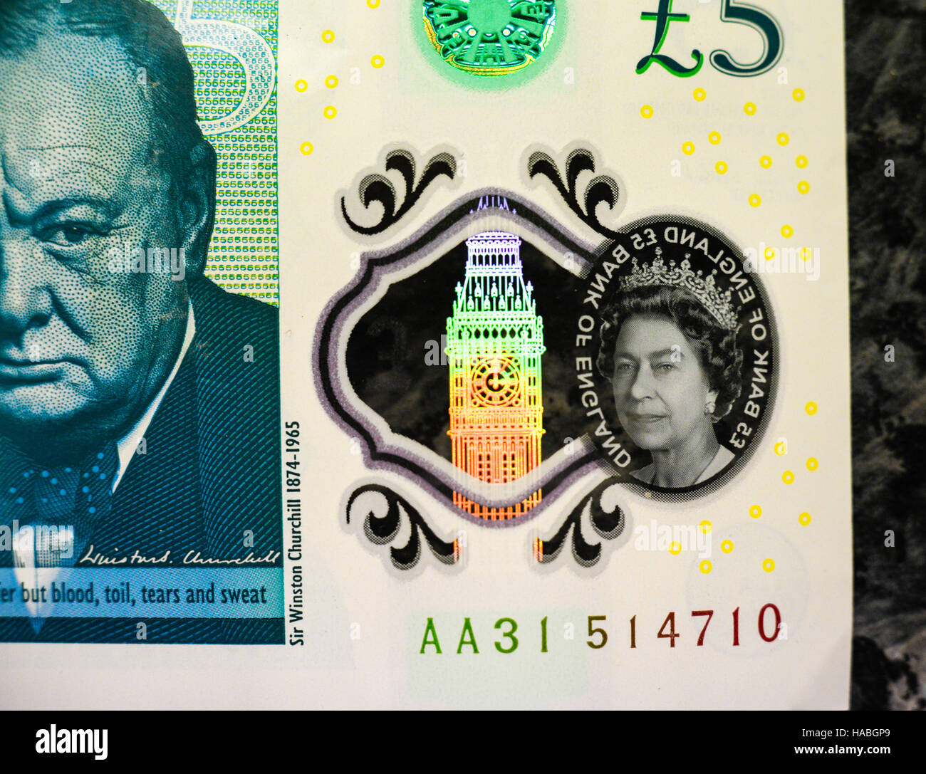 29th November 2016, UK. The new five pound note, or fiver, contains tallow, an animal product, the Bank of England - Stock Image