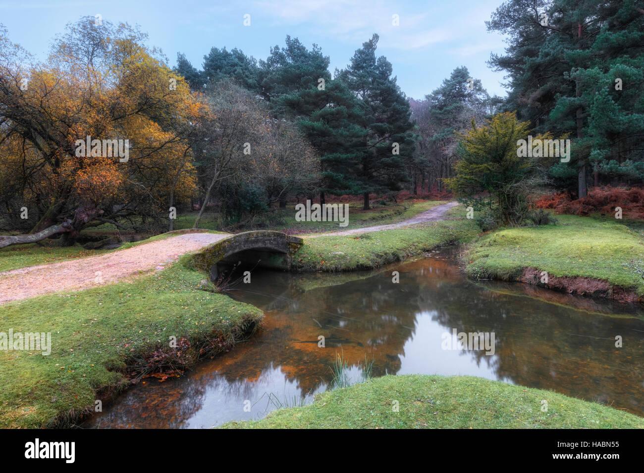 Splash Bridge, Holly Hatch Inclosure, New Forest, Hampshire, England, UK - Stock Image