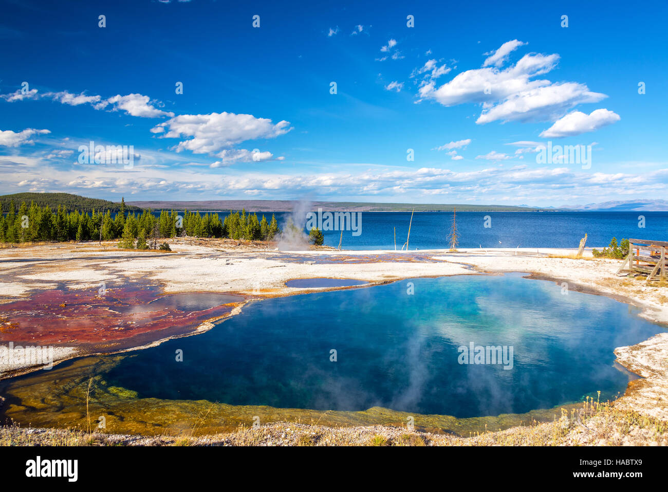 Bacteria mat and abyss pool at the West Thumb Geyser Basin in Yellowstone National Park - Stock Image