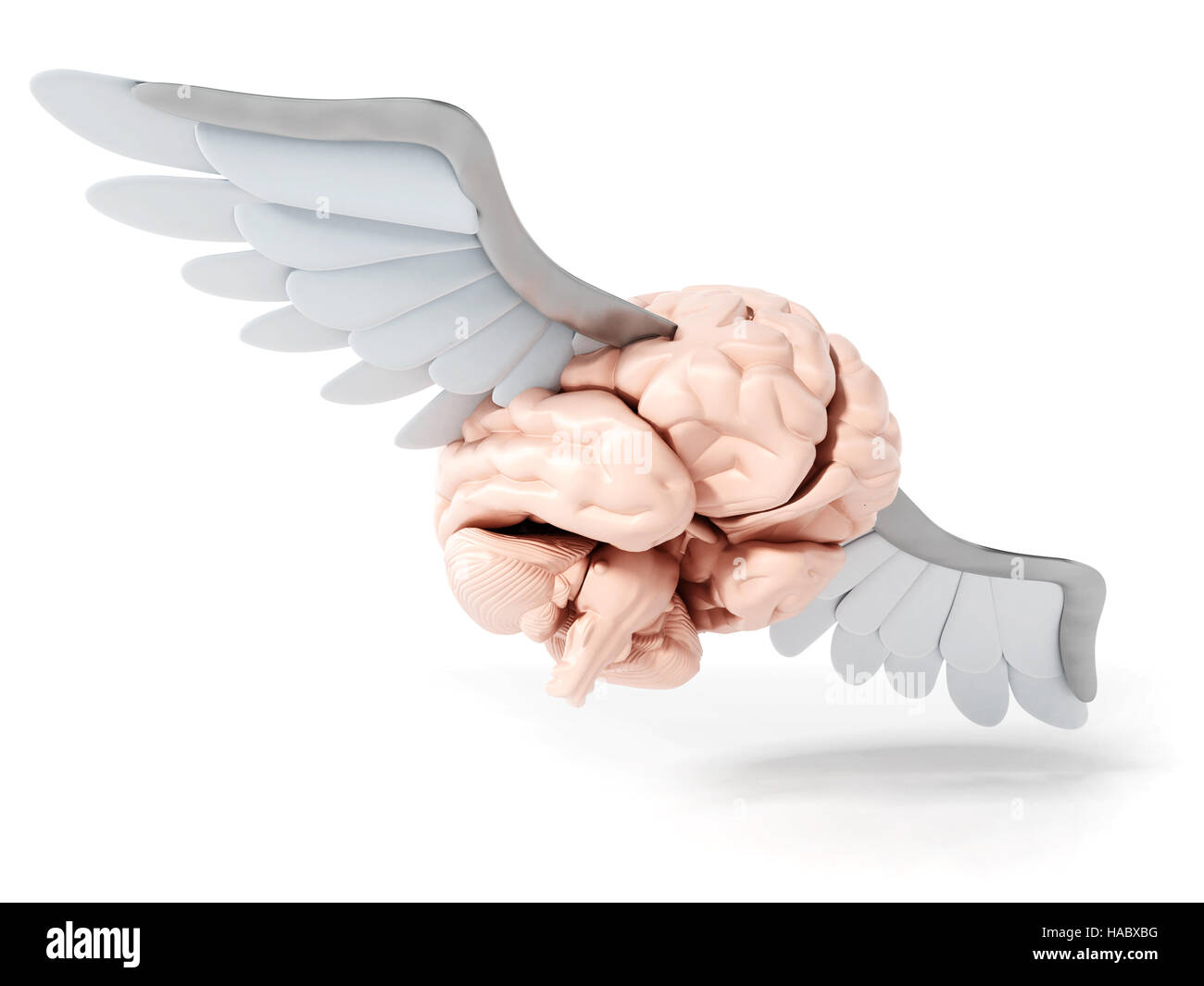 Flying brain with white wings. 3D illustration. - Stock Image