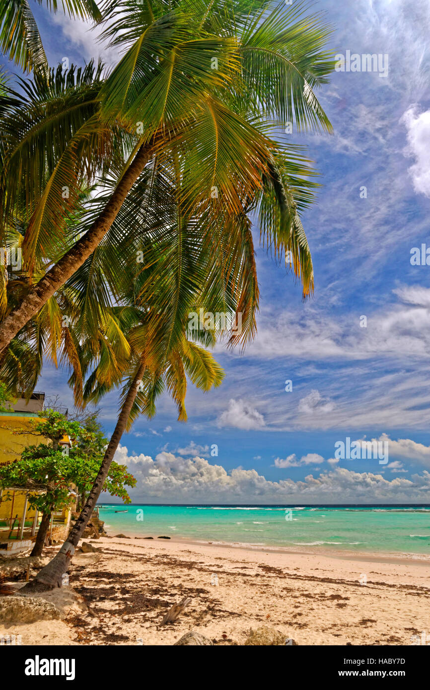 Worthing Beach at Worthing, between St. Lawrence Gap and Bridgetown, Barbados, Caribbean. - Stock Image